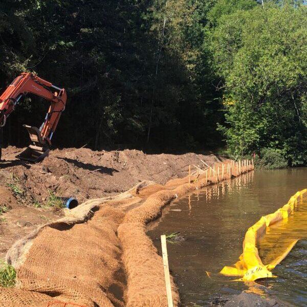 Veteran's Park Restoration